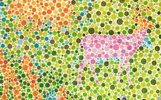 Главные признаки дейтеранопии и что это за болезнь