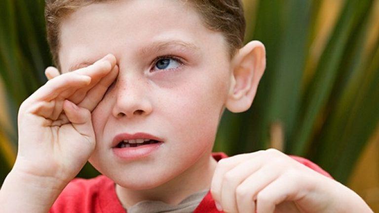 Структура глаза регулирует поступление света орган зрения