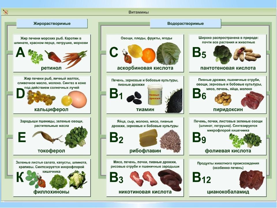 Таблица витаминов для организма