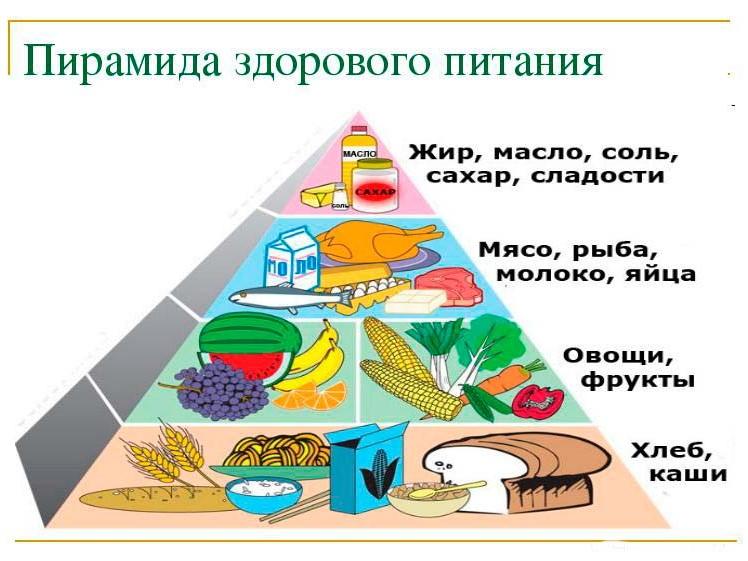 Пирамида здоровой пищи