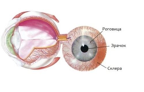 Заболевание зрения